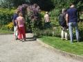 8-aug.-växt-quiz-i-trädgården