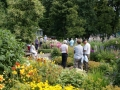 Svaneholmsträdgården den 12 juli