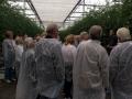 Trädgårdsförening besöker tomatodling sept.-18