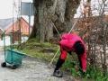 Vårupptakt  i Svaneholm: Rabattrensning