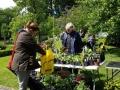 Växtmarknad den 6 juni