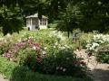 Vår trädgård under dagen ' Tusen trädgårdar' den 28 juni.
